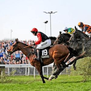 2019 Grand National Horse Race