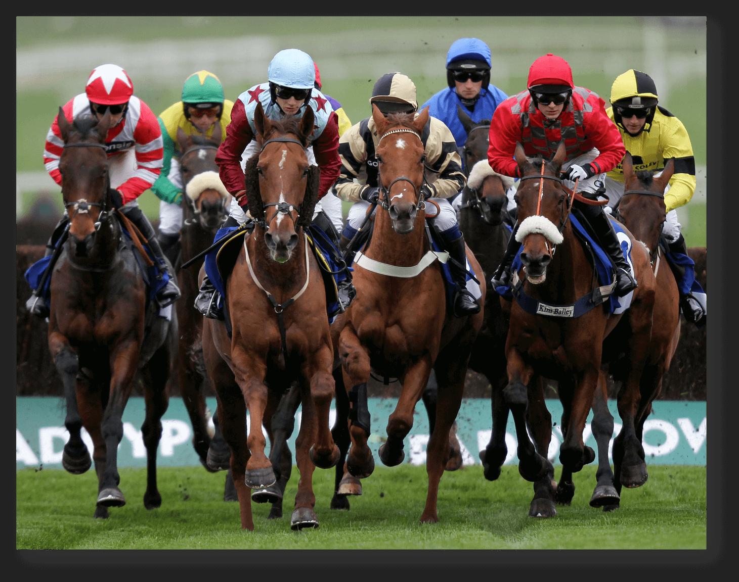 Horse Racing Revenue Ruling
