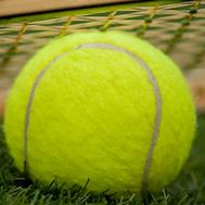 Wimbledon reduces capacity